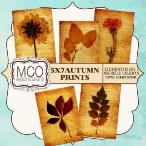 MCO_5x7AutumnPrints