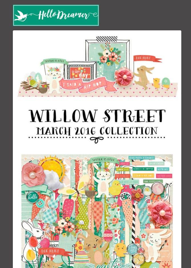 willowstreetnl